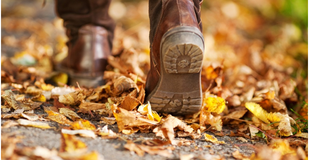 Autumn-leaves-walking